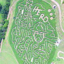 foster-family-farm-corn-maze-2016